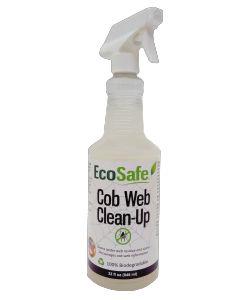 Cob Web Clean-Up